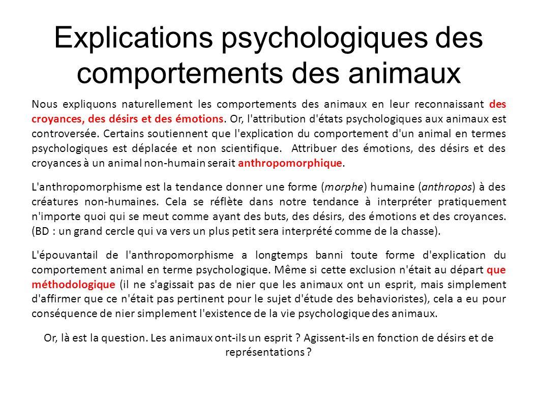 Explications psychologiques des comportements des animaux Nous expliquons naturellement les comportements des animaux en leur reconnaissant des croyan
