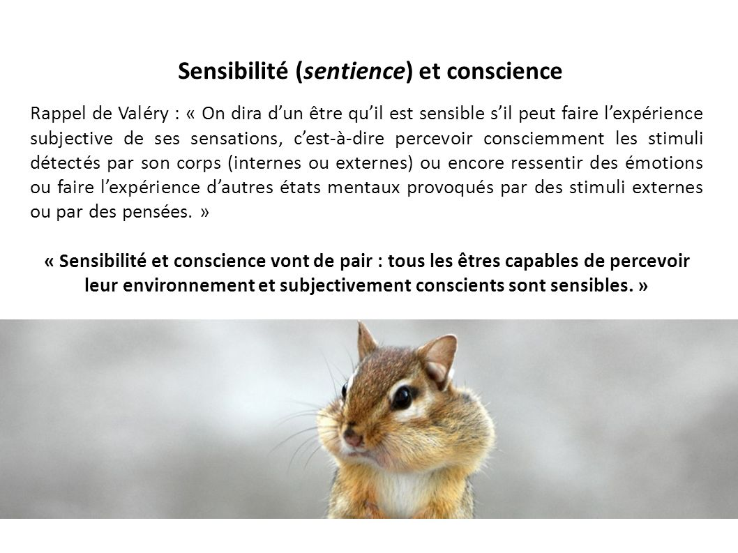 Sensibilité (sentience) et conscience Rappel de Valéry : « On dira dun être quil est sensible sil peut faire lexpérience subjective de ses sensations,