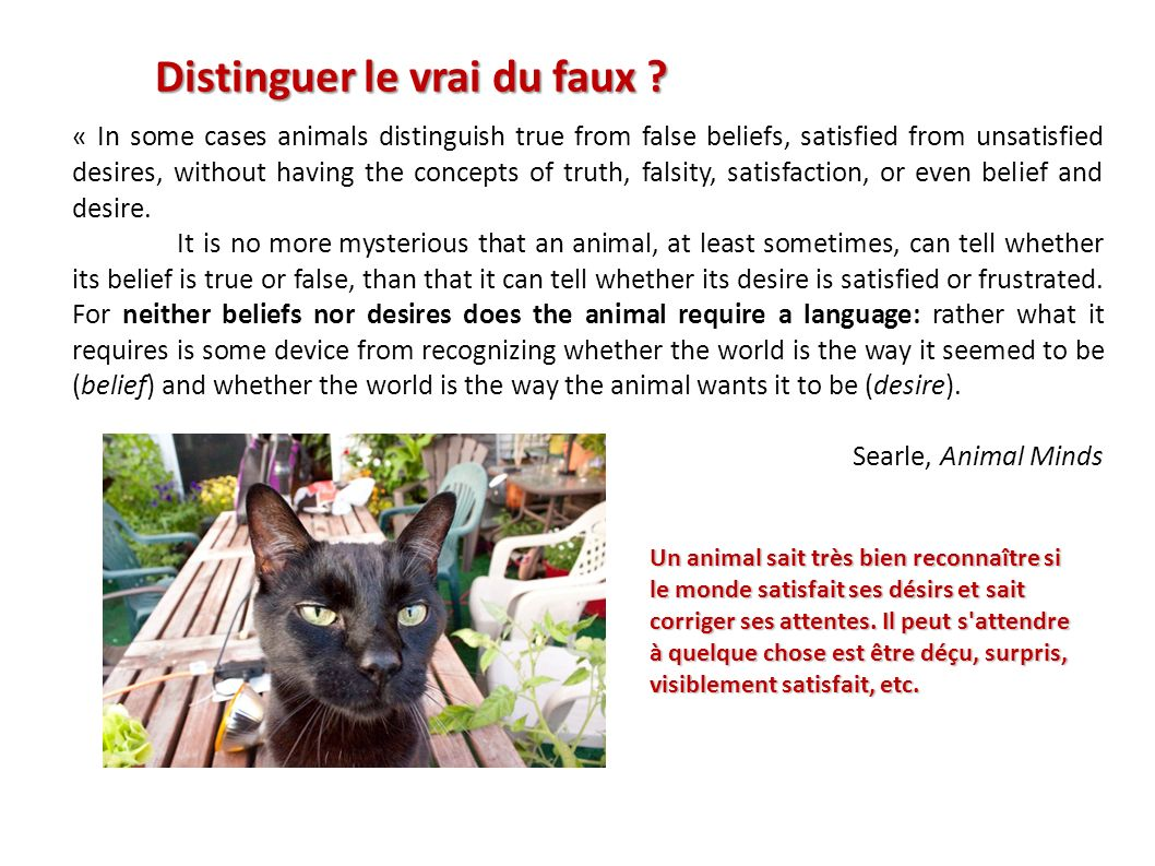 « In some cases animals distinguish true from false beliefs, satisfied from unsatisfied desires, without having the concepts of truth, falsity, satisf