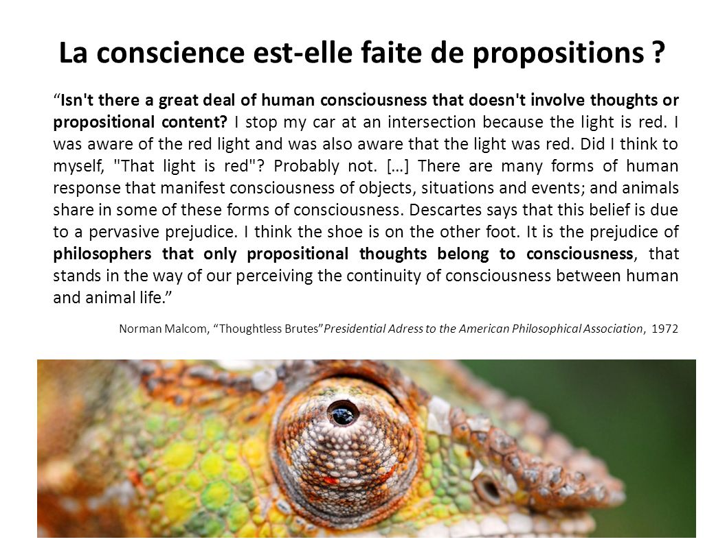La conscience est-elle faite de propositions ? Isn't there a great deal of human consciousness that doesn't involve thoughts or propositional content?