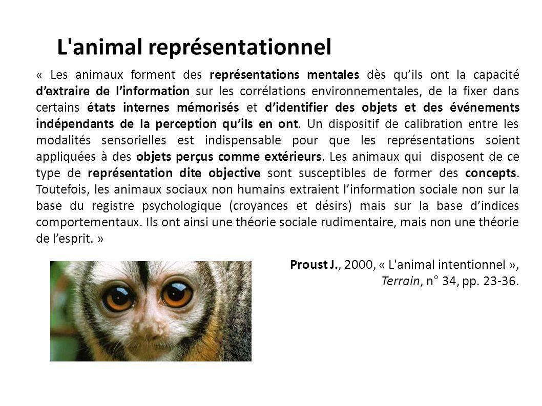 L'animal représentationnel « Les animaux forment des représentations mentales dès quils ont la capacité dextraire de linformation sur les corrélations