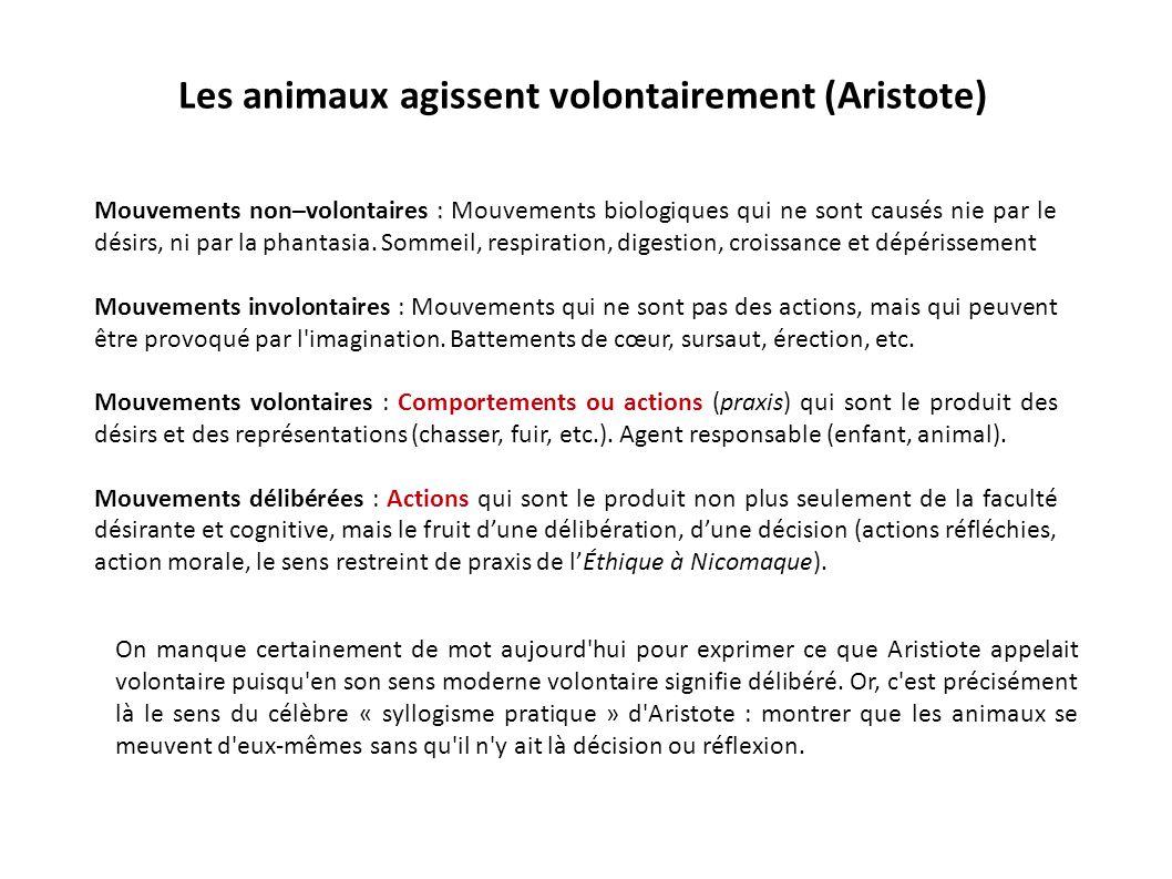 Les animaux agissent volontairement (Aristote) Mouvements non–volontaires : Mouvements biologiques qui ne sont causés nie par le désirs, ni par la pha