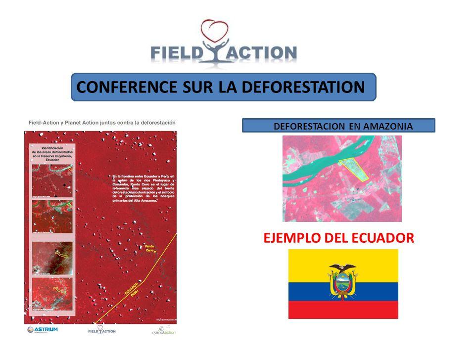 CONFERENCE SUR LA DEFORESTATION DEFORESTACION EN AMAZONIA EJEMPLO DEL ECUADOR
