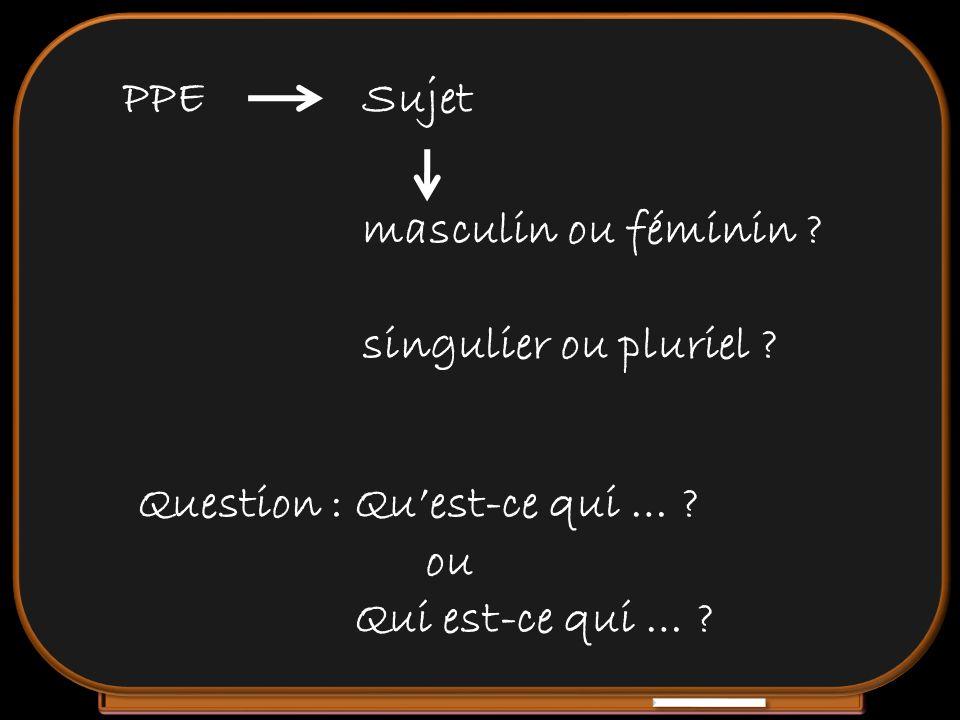 Sujet Question : Quest-ce qui … ? ou Qui est-ce qui … ? PPE masculin ou féminin ? singulier ou pluriel ?