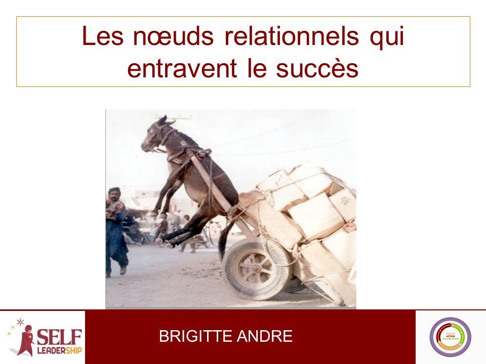 Les nœuds relationnels qui entravent le succès BRIGITTE ANDRE