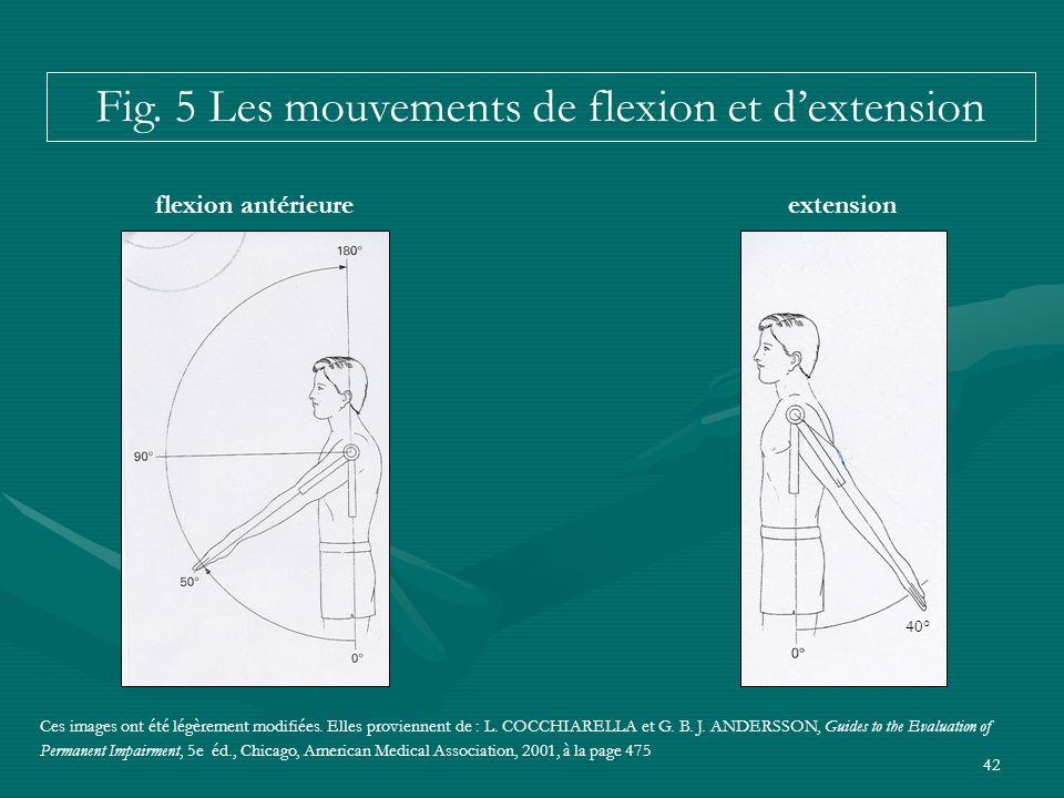 42 extension 40° flexion antérieure Ces images ont été légèrement modifiées. Elles proviennent de : L. COCCHIARELLA et G. B. J. ANDERSSON, Guides to t