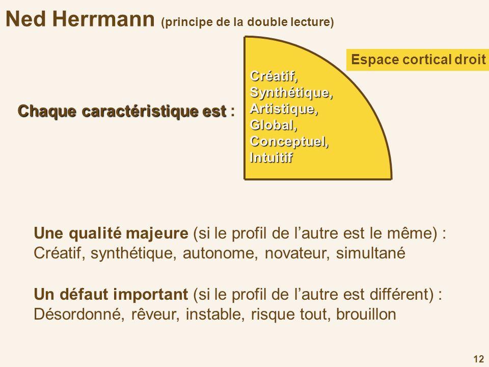 12 Ned Herrmann (principe de la double lecture)Créatif,Synthétique,Artistique,Global,Conceptuel,Intuitif Espace cortical droit D Un défaut important (