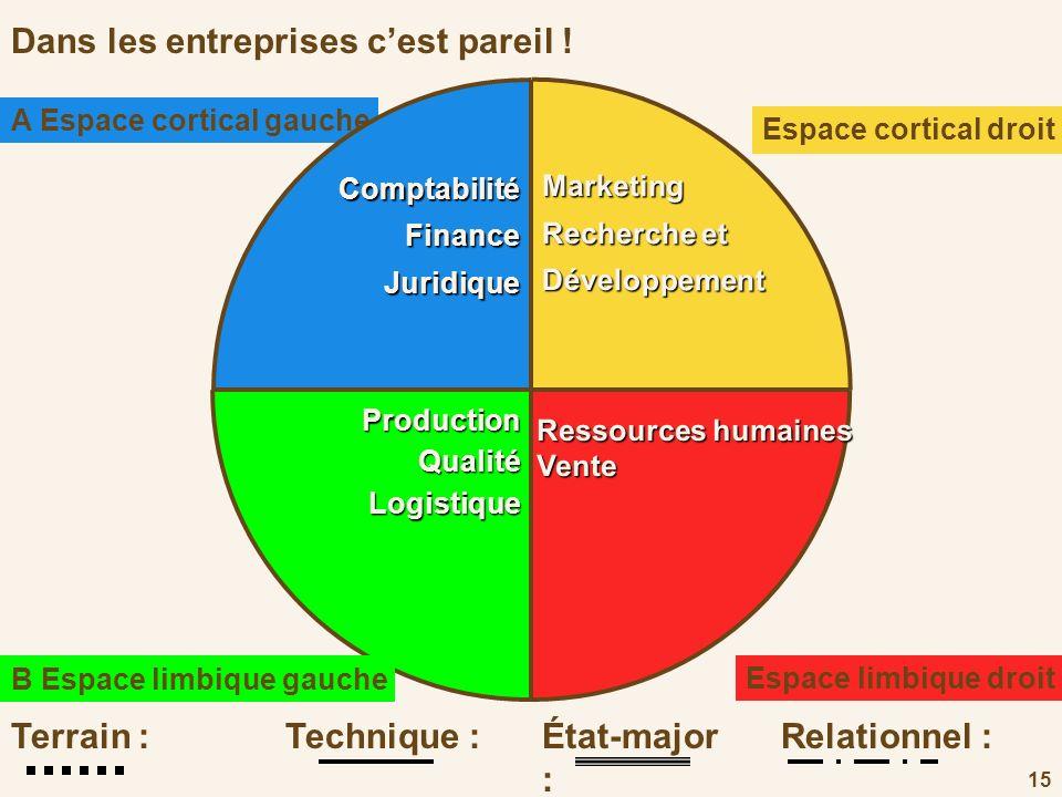 15 Dans les entreprises cest pareil !Marketing Recherche et Développement Espace cortical droit D Ressources humaines Vente Espace limbique droit C Pr