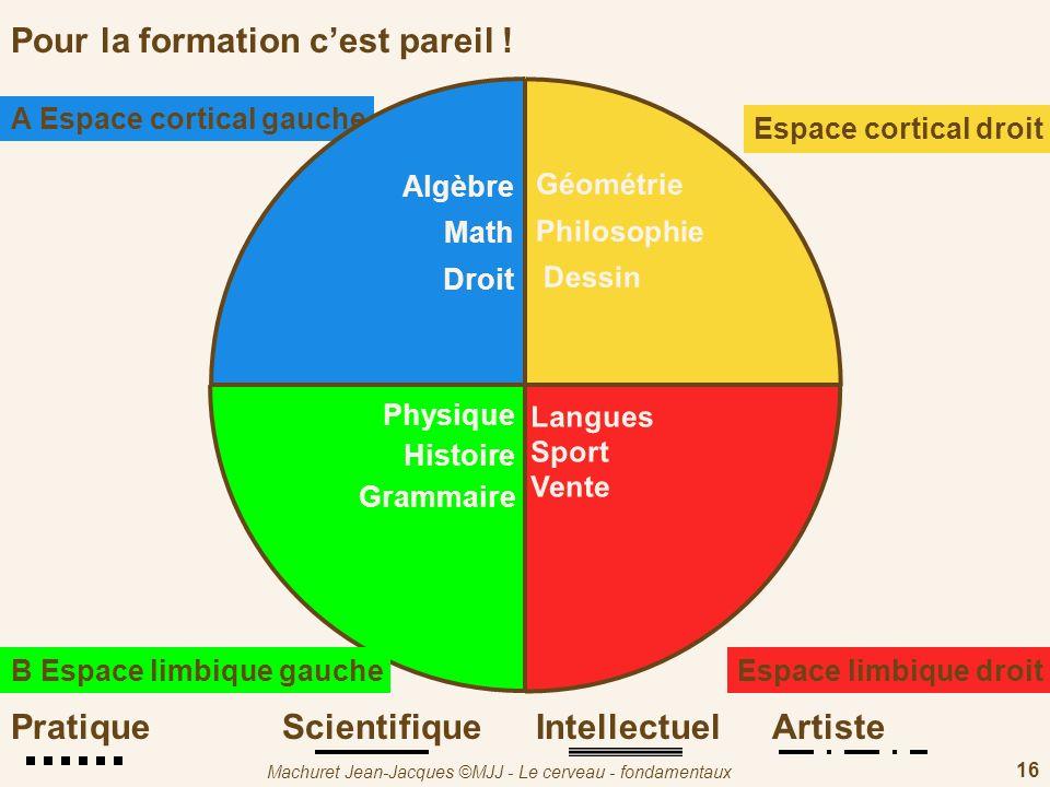 Machuret Jean-Jacques ©MJJ - Le cerveau - fondamentaux 16 Pour la formation cest pareil ! Géométrie Philosophie Dessin Espace cortical droit D Langues