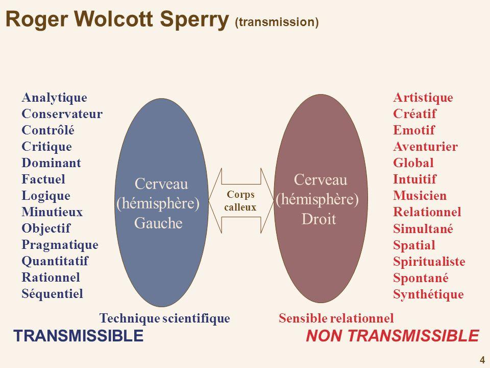 4 Roger Wolcott Sperry (transmission) Cerveau (hémisphère) Gauche Corps calleux Analytique Conservateur Contrôlé Critique Dominant Factuel Logique Min