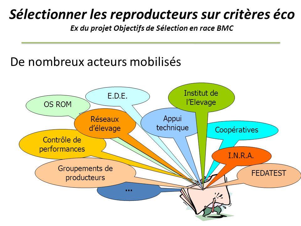 Sélectionner les reproducteurs sur critères éco Ex du projet Objectifs de Sélection en race BMC De nombreux acteurs mobilisés … OS ROM Contrôle de per