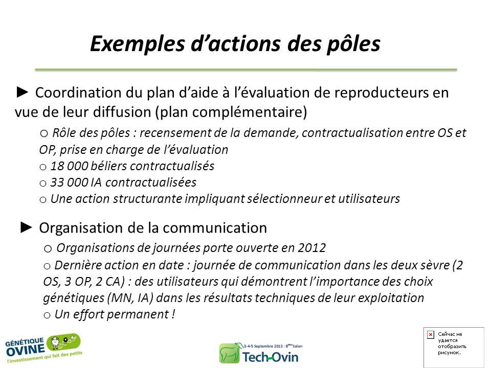 Exemples dactions des pôles Coordination du plan daide à lévaluation de reproducteurs en vue de leur diffusion (plan complémentaire) o Rôle des pôles