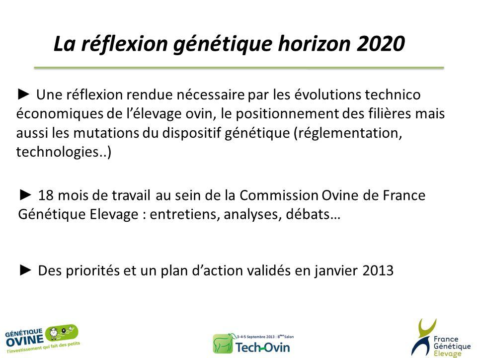 La réflexion génétique horizon 2020 Une réflexion rendue nécessaire par les évolutions technico économiques de lélevage ovin, le positionnement des fi