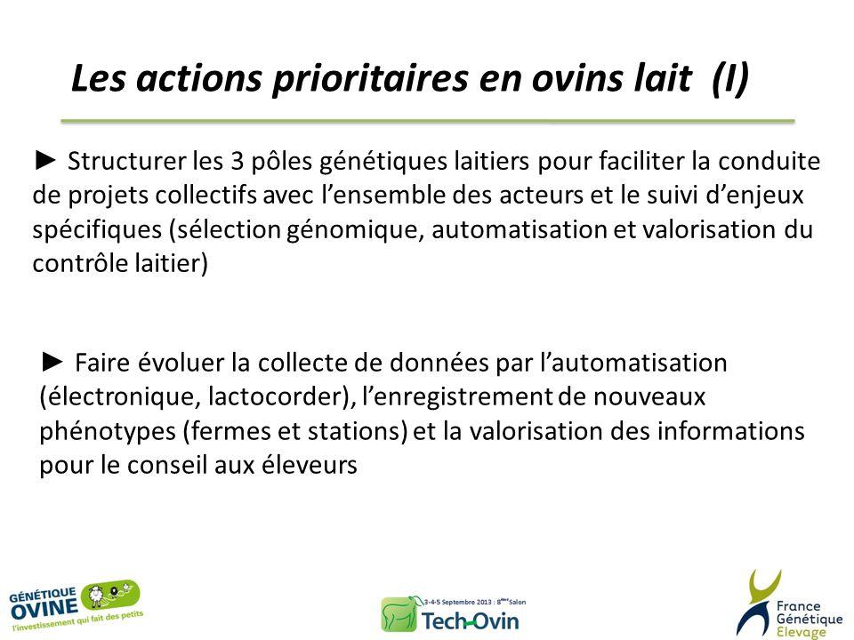 Les actions prioritaires en ovins lait (II) Intégrer la génomique en sélection dès 2015 pour la Lacaune, les années suivantes pour les autres races Prendre en compte les nouveaux caractères dans le schémas de sélection (morphologie mammaire, cellules, composition du lait, persistance laitière, aptitude à la monotraite…) Contribuer aux programmes de RecherchexDéveloppement pour préparer lanimal de demain (efficacité alimentaire, robustesse…)