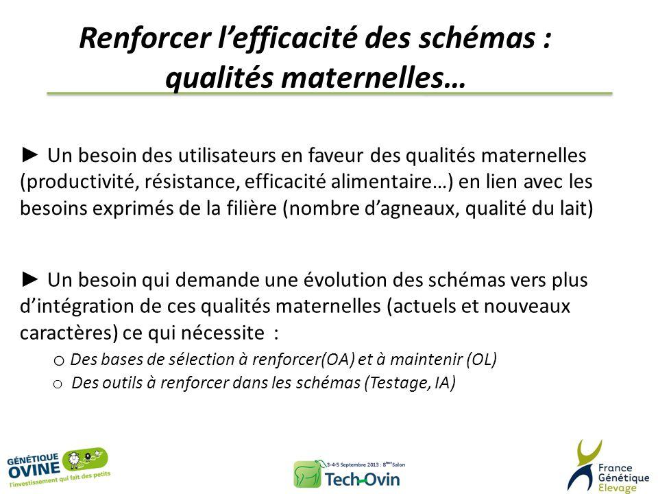 Renforcer lefficacité des schémas : qualités maternelles… Un besoin des utilisateurs en faveur des qualités maternelles (productivité, résistance, eff