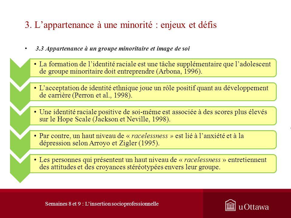 3. Lappartenance à une minorité : enjeux et défis 3.2 Minorités visibles et situation économique D) Revenu En 2004, les revenus de 47% des nouveaux im