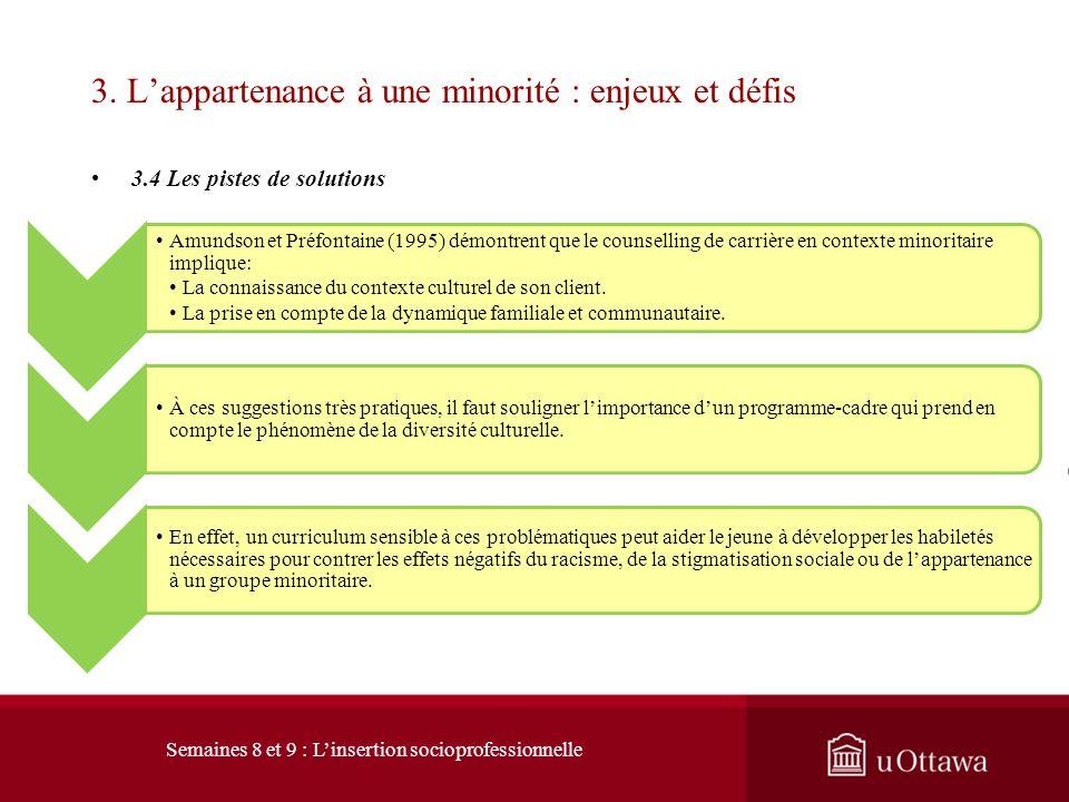 3. Lappartenance à une minorité : enjeux et défis 3.4 Les pistes de solution Un petit boulot à temps partiel favorise le développement dune connaissan