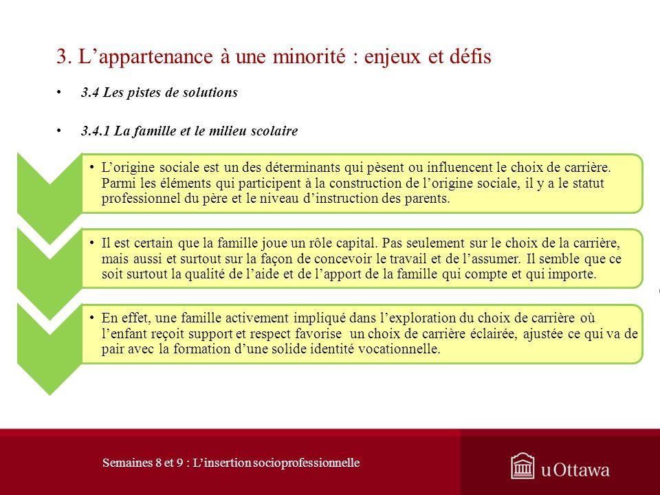 3. Lappartenance à une minorité : enjeux et défis 3.4 Les pistes de solutions Amundson et Préfontaine (1995) démontrent que le counselling de carrière