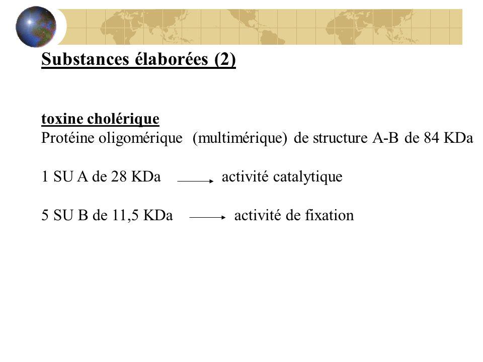 Substances élaborées (2) toxine cholérique Protéine oligomérique (multimérique) de structure A-B de 84 KDa 1 SU A de 28 KDa activité catalytique 5 SU