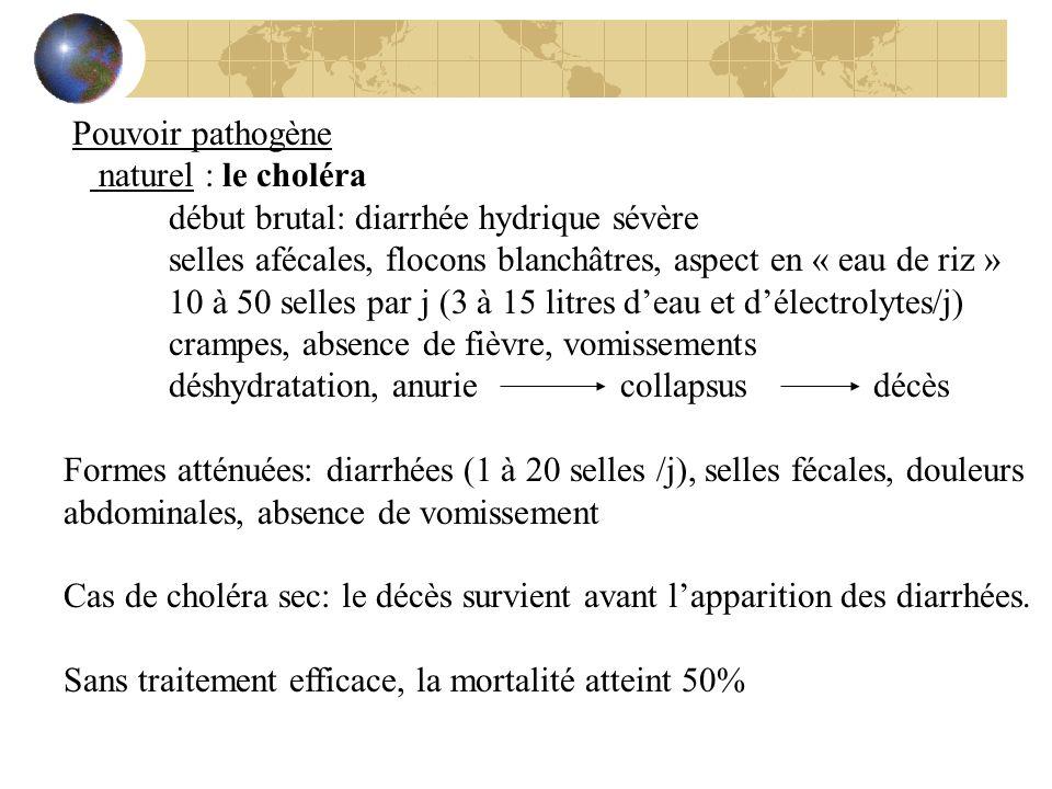 Pouvoir pathogène naturel : le choléra début brutal: diarrhée hydrique sévère selles afécales, flocons blanchâtres, aspect en « eau de riz » 10 à 50 s