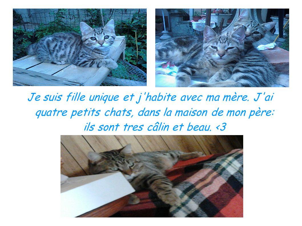 Je suis fille unique et j'habite avec ma mère. J'ai quatre petits chats, dans la maison de mon père: ils sont tres câlin et beau. <3