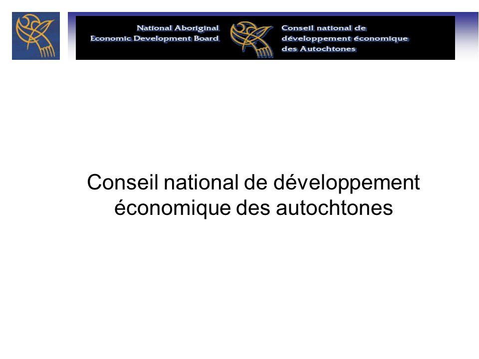 2 Établi en 1990, le Conseil national de développement économique des autochtones a été créé par arrêté en conseil pour offrir des conseils sur les politiques et les programmes stratégiques au gouvernement fédéral pour le développement économique des autochtones.