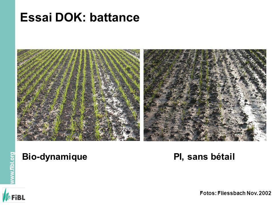 www.fibl.org Essai DOK: battance Fotos: Fliessbach Nov. 2002 Bio-dynamiquePI, sans bétail