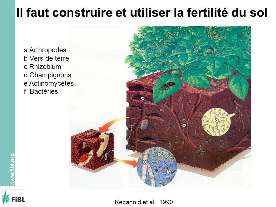 www.fibl.org Essai de longue durée DOK, Therwil, Suisse N M D 1 D 2 O 1 O 2 C 1 C 2 N M D 1 D 2 O 1 O 2 C 1 C 2 D 1 D 2 N M C 1 C 2 O 1 O 2 C 1 C 2 N M D 1 D 2 N: témoin sans fumure D: bio-dynamique O: organo-biologique C: conventionnel (depuis 1992 PER) M: minéral (depuis 1992 PER) 1: fumure réduite (0.7 UGBF/ha) 2: fumure normale (1.4 UGBF/ha) 8 procédés 3 cultures 4 répétitions 96 parcelles à 100m 2 Mäder et al.
