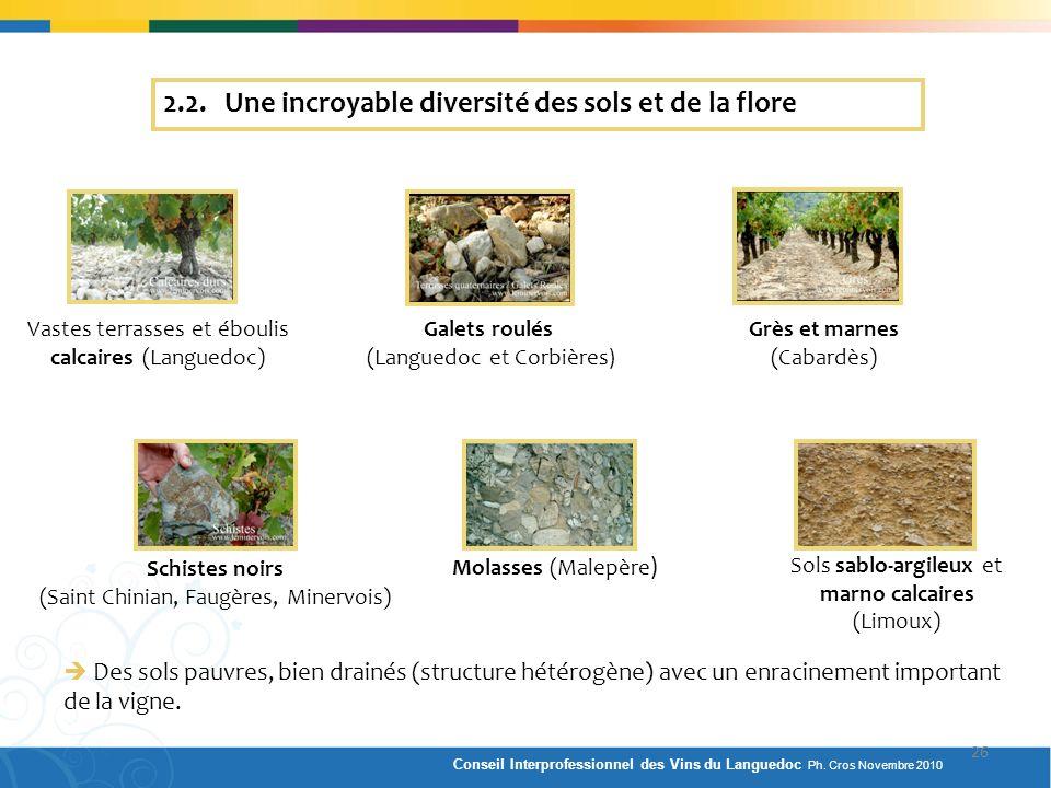 Vastes terrasses et éboulis calcaires (Languedoc) Galets roulés (Languedoc et Corbières) Grès et marnes (Cabardès) Schistes noirs (Saint Chinian, Faug
