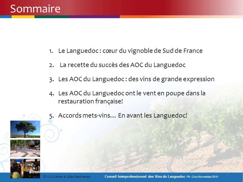 1.Le Languedoc : cœur du vignoble de Sud de France 2. La recette du succès des AOC du Languedoc 3.Les AOC du Languedoc : des vins de grande expression