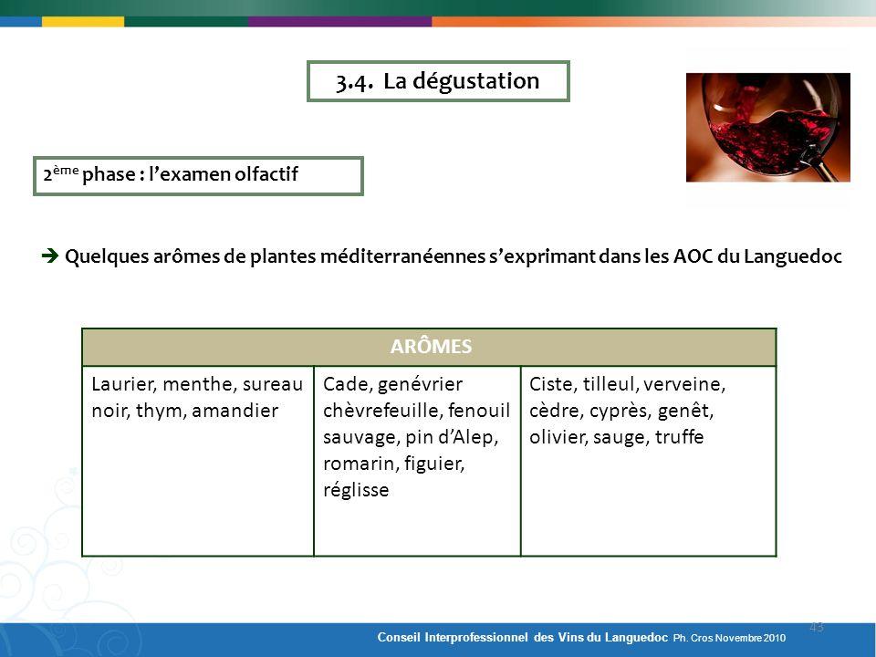 2 ème phase : lexamen olfactif Quelques arômes de plantes méditerranéennes sexprimant dans les AOC du Languedoc ARÔMES Laurier, menthe, sureau noir, t