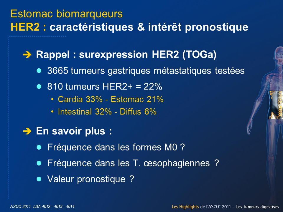 Estomac biomarqueurs HER2 : caractéristiques & intérêt pronostique Rappel : surexpression HER2 (TOGa) 3665 tumeurs gastriques métastatiques testées 81