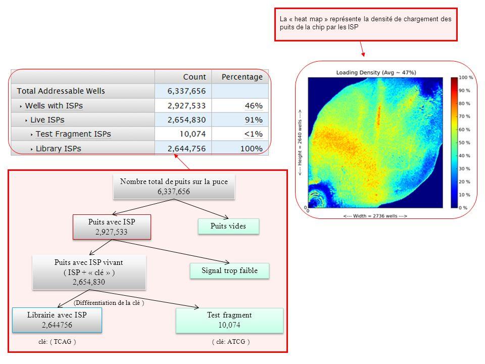 Nombre de séquences ayant franchi lensemble des filtres et reportées dans les fichiers SFF et FASTQ % enrichissement = ( Puits avec ISP ) - Test fragment avec ISP Librairie avec ISP Séquences dont la taille est inférieure à 8 bases (clé de 4 bases inclue) Séquences pour lesquelles le séquençage de la clé ne « match » pas parfaitement Séquences considérées comme ayant plus dun fragment par ISP Séquences ayant une homologie très faible par rapport au génome de référence