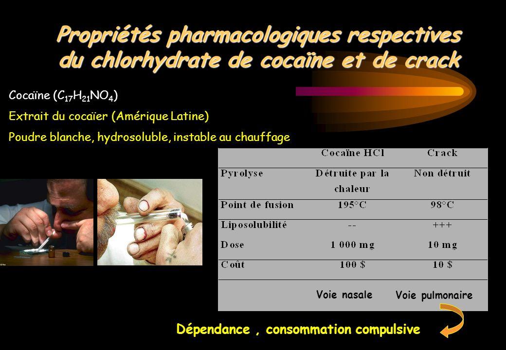 La cocaïne en quelques chiffres … 2000s 1990s Prix de 1 g (euros) 50-60130-150 Saisie annuelle (kg) 1900441 CA marché (millions euros) 2400800 Consommateurs chez 18-44 ans 5%1,2% Usagers hospitalisés 30%5% Aux Etats-Unis 15 % de la population et 40 % des 25-30 ans 14 % de dépistage positif dans une maternité de New-York