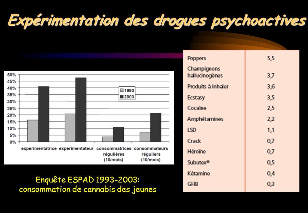 Consommations en Europe: 1e position: Cannabis 2e position: Ecstasy 3e position: Cocaïne 62 M (20%) ont testé le cannabis 3 M consommateurs cannabis 9 M ont testé la cocaïne 2 M usagers de drogues à problèmes 850 000 injecteurs 185 millions de consommateurs de drogues illégales dans le monde Explosion des trafics: Les années 2000 = les années de tous les records !.