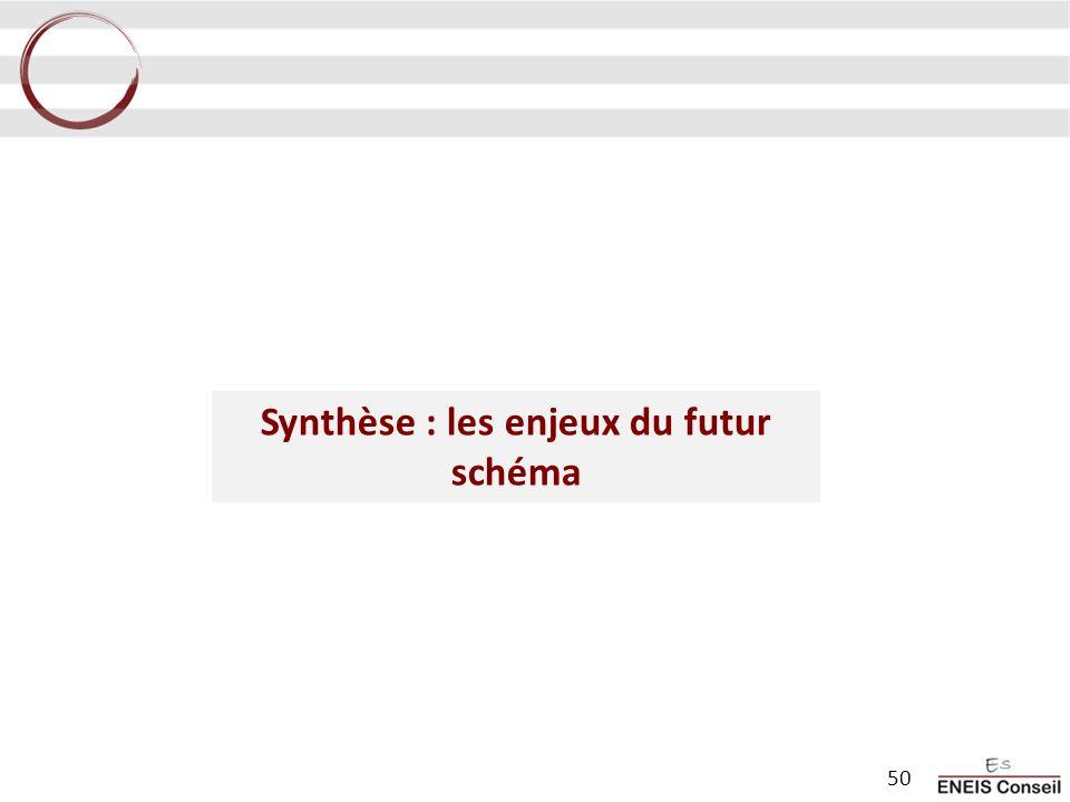 Synthèse : les enjeux du futur schéma 50