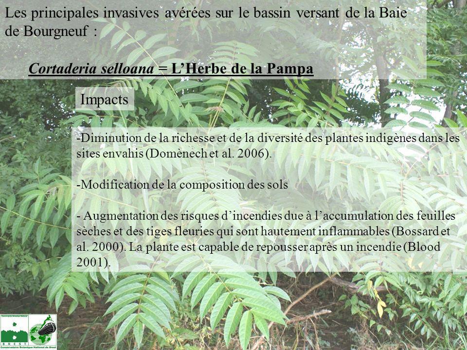 -Diminution de la richesse et de la diversité des plantes indigènes dans les sites envahis (Domènech et al. 2006). -Modification de la composition des