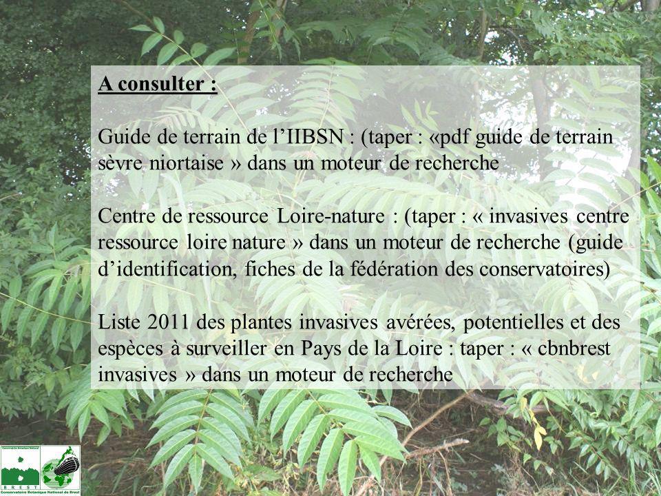 A consulter : Guide de terrain de lIIBSN : (taper : «pdf guide de terrain sèvre niortaise » dans un moteur de recherche Centre de ressource Loire-natu