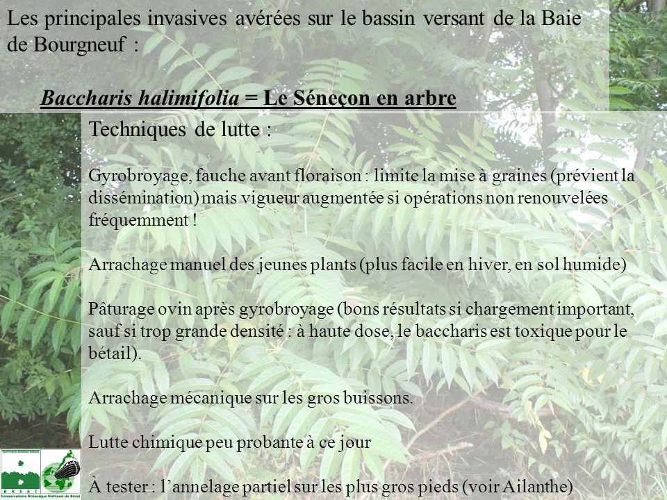 Pays de la Loire : 114 taxons invasifs ou à surveiller listés (87 en Vendée) : 21 plantes invasives avérées (19 en Vendée) 27 plantes invasives potentielles (20 en Vendée).