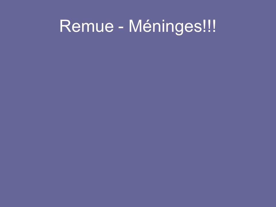 Remue - Méninges!!!