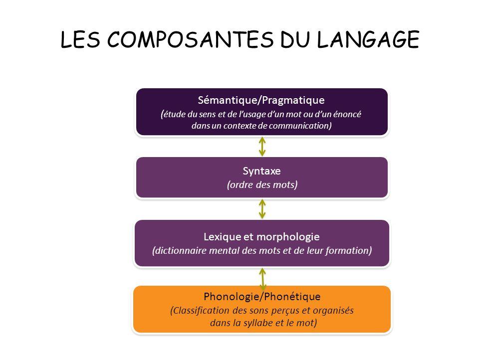 LES COMPOSANTES DU LANGAGE Sémantique/Pragmatique ( étude du sens et de lusage dun mot ou dun énoncé dans un contexte de communication) Sémantique/Pra