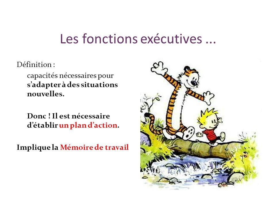 Les fonctions exécutives... Définition : capacités nécessaires pour sadapter à des situations nouvelles. Donc ! Il est nécessaire détablir un plan dac