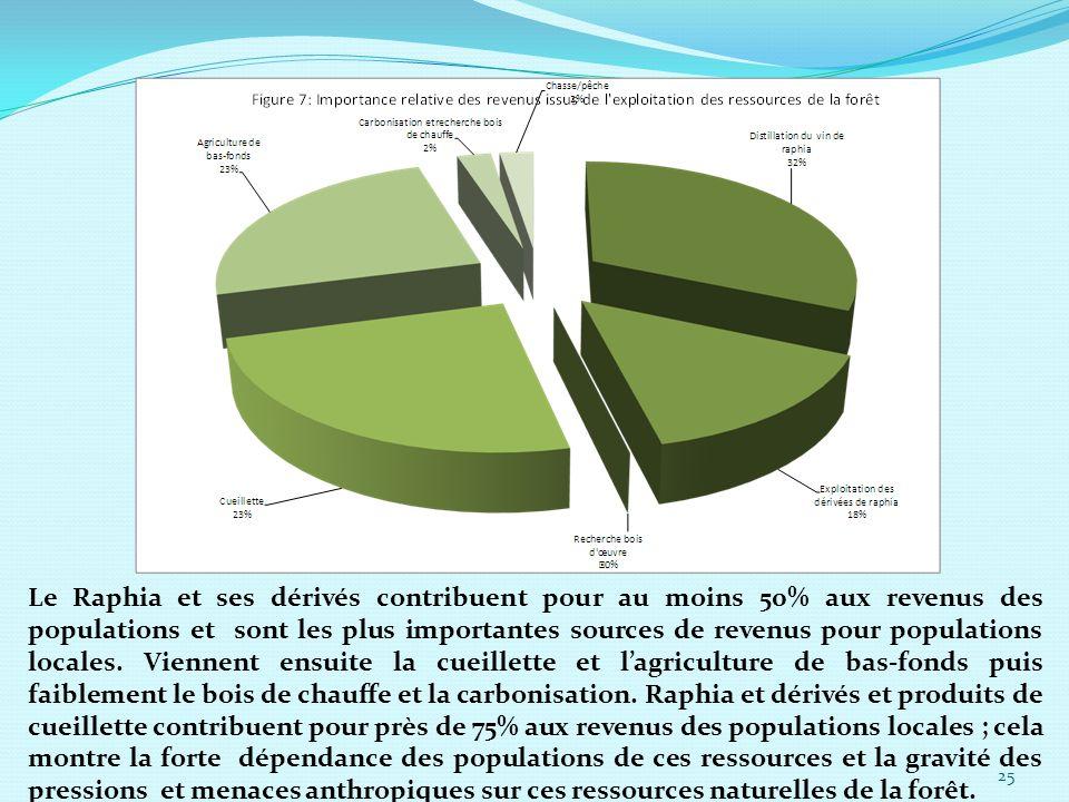 Le Raphia et ses dérivés contribuent pour au moins 50% aux revenus des populations et sont les plus importantes sources de revenus pour populations lo