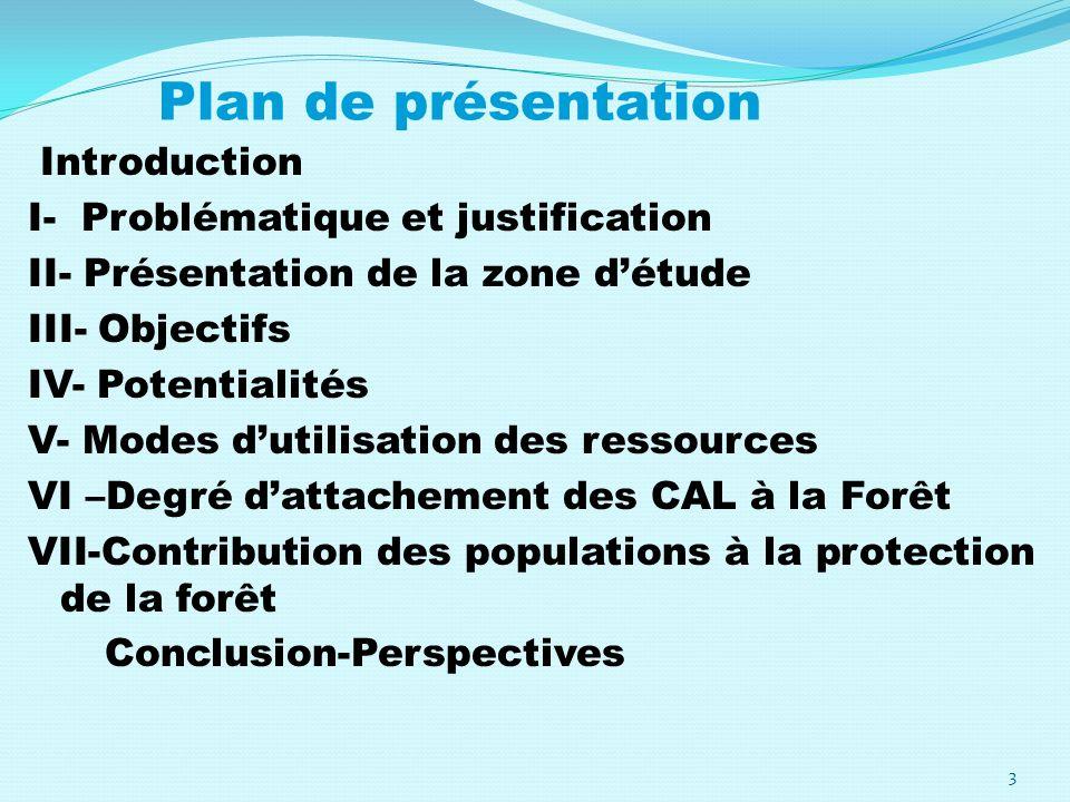 Plan de présentation Introduction I- Problématique et justification II- Présentation de la zone détude III- Objectifs IV- Potentialités V- Modes dutil