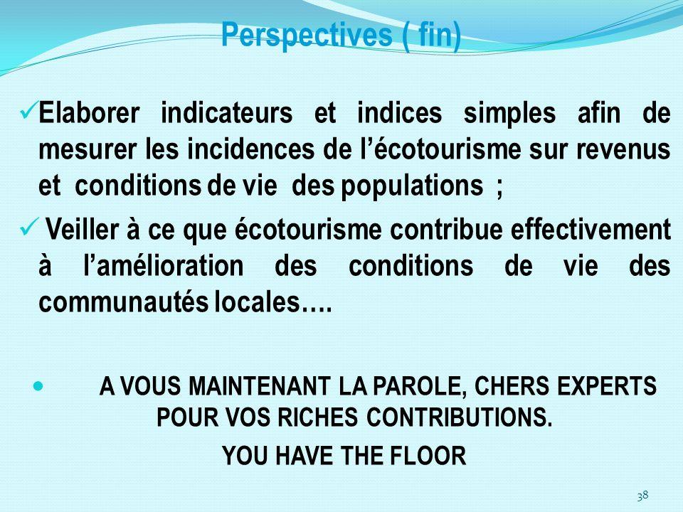 Perspectives ( fin) Elaborer indicateurs et indices simples afin de mesurer les incidences de lécotourisme sur revenus et conditions de vie des popula