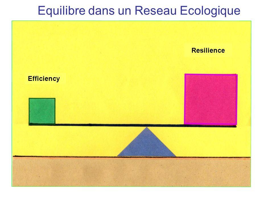 Resilience Efficiency Equilibre dans un Reseau Ecologique