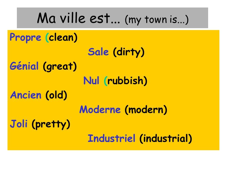 Le vocabulaire Villes = town Fleuve/rivière = river Un monument = a monument Les montagnes = mountain Sites touristiques = touristy sites Région = area / region