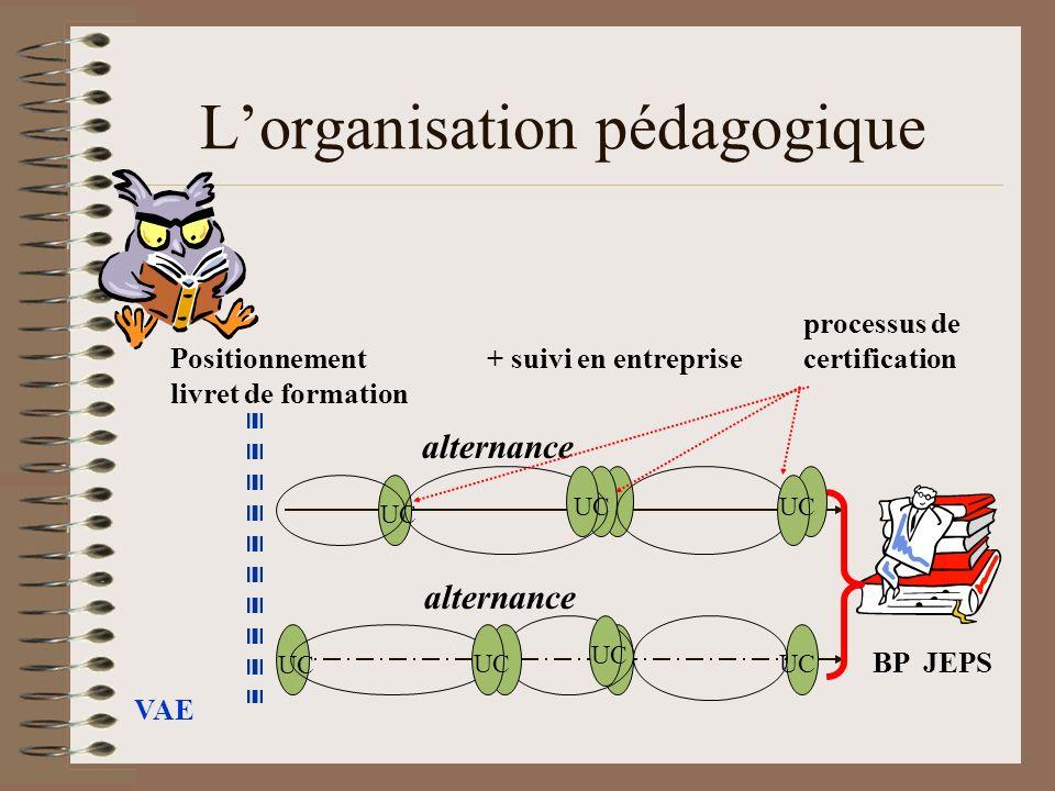 Lorganisation pédagogique alternance alternance VAE BP JEPS UC processus de Positionnement + suivi en entreprisecertification livret de formation UC