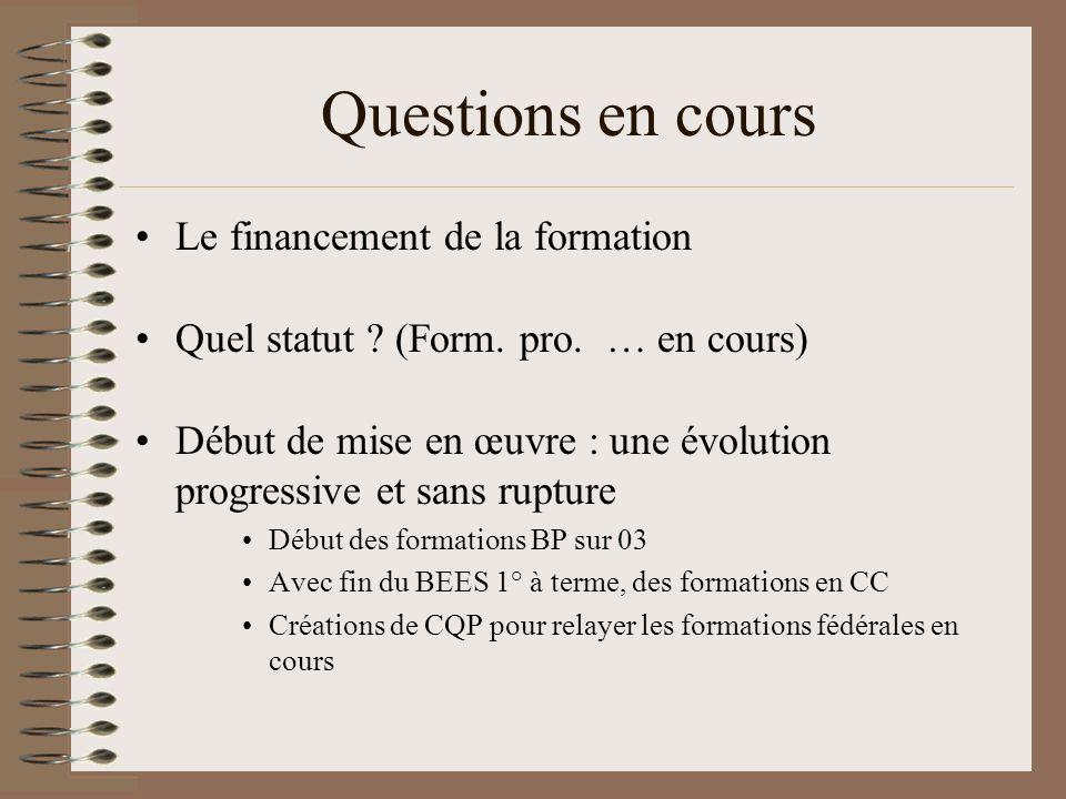 Questions en cours Le financement de la formation Quel statut ? (Form. pro. … en cours) Début de mise en œuvre : une évolution progressive et sans rup