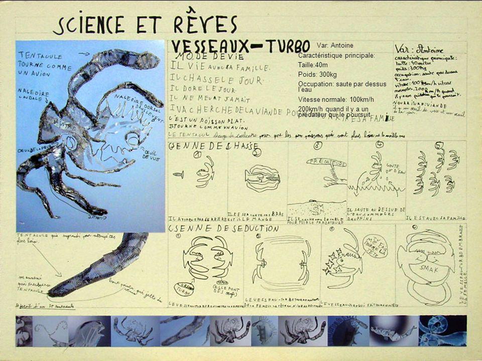 2. Fiches sciences et rêves Principe: …décrire le mode de vie, une scène de chasse et une scène de séduction avec des dessins et du texte. Remarque: L